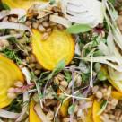 shaved fennel, beet, barley salad  www.girlontherange.com