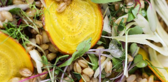 shaved golden beet, fennel and barley salad