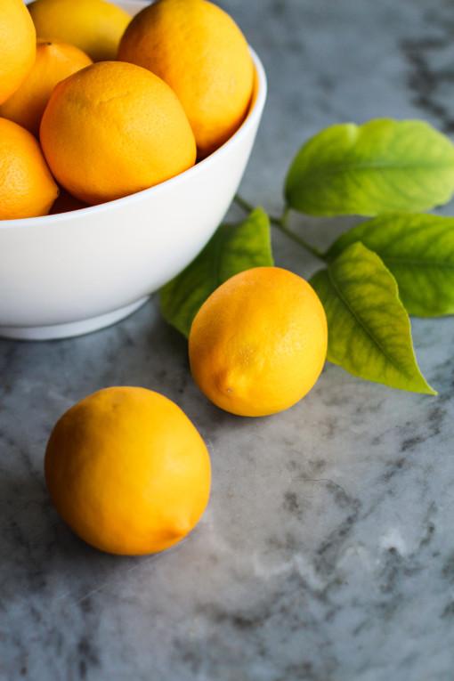 meyer lemons www.girlontherange.com