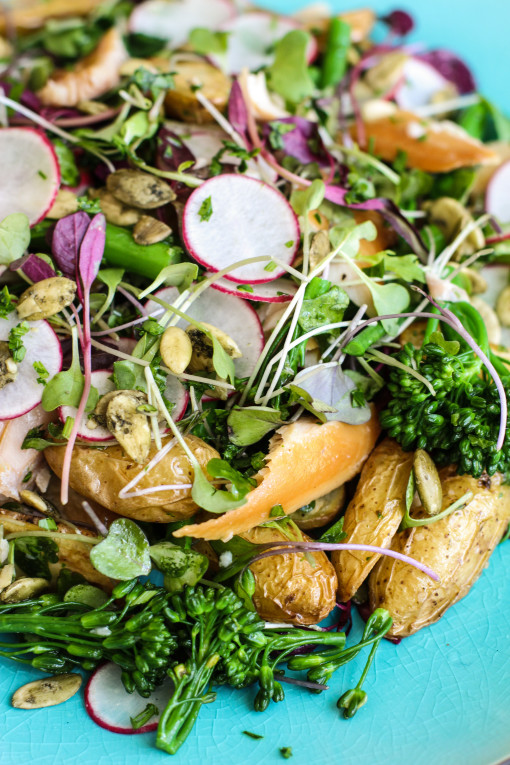 trout and broccolini salad 2 www.girlontherange.com_edited
