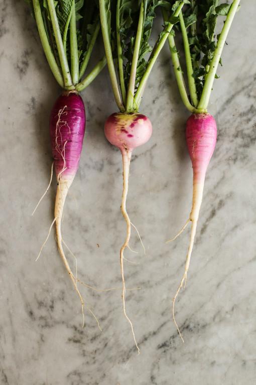 three radish www.girlontherange.com