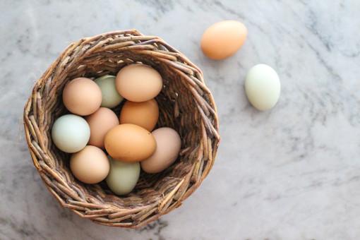 egg basket www.girlontherange.com