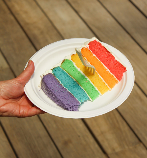 rainbow cake slice www.girlontherange.com